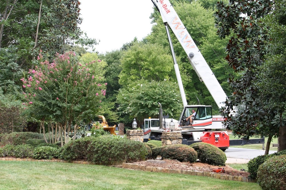 Bill's Tree Service, Inc