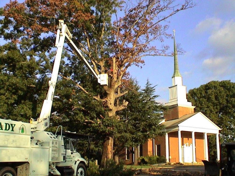 Frady Tree Care
