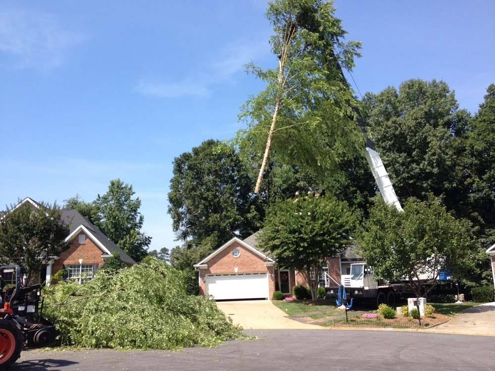Randleman's Tree Service