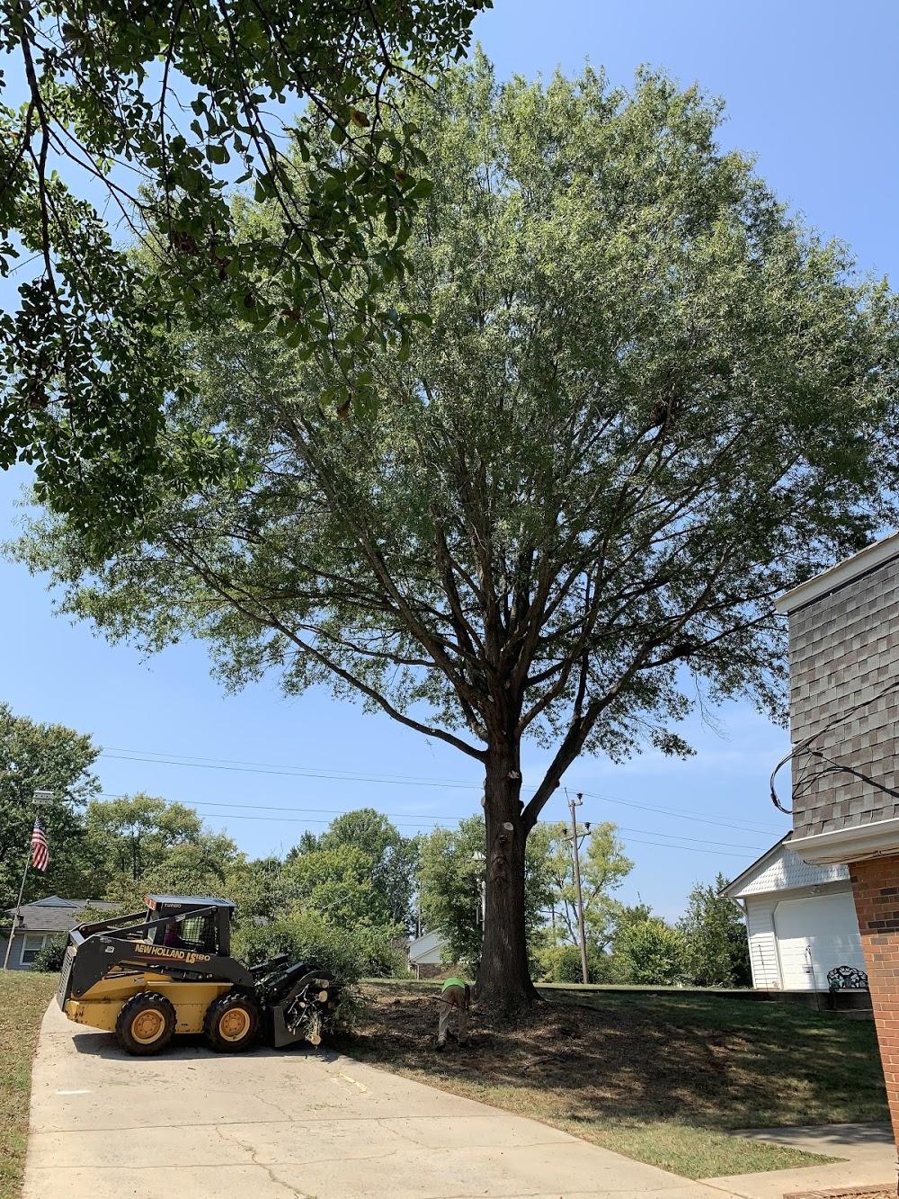 Rocky's Tree Service